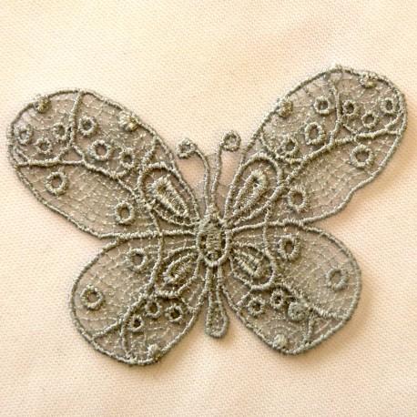 Papillon gris