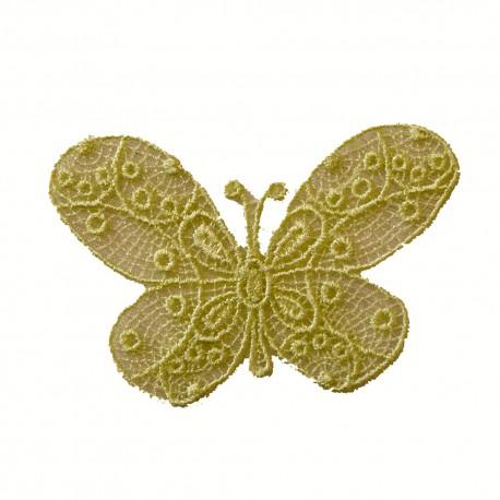 Papillon vert anis