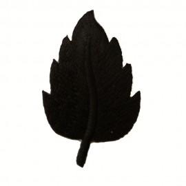 Feuille noir